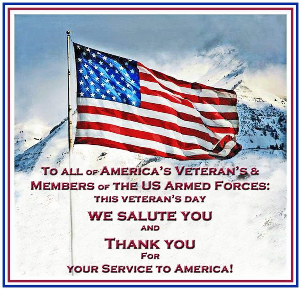 Veterans Day Thank You Quotes and Sayings Image